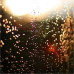 0,000125 Sekunden Sommerregen