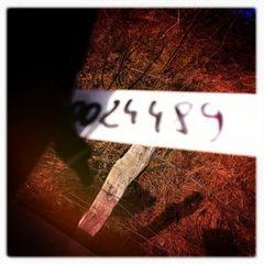 0024489 nicht immer ist das Nachlegende von Interesse...