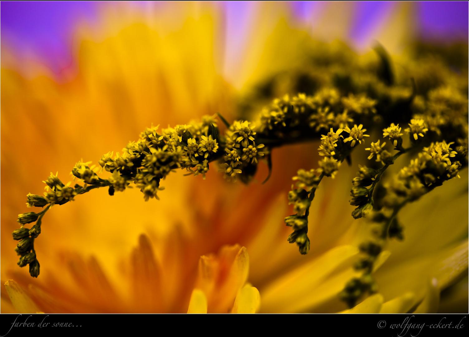 0084 - Farben der Sonne