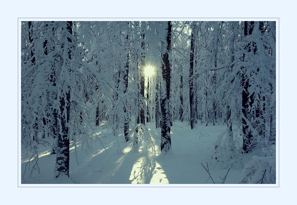 02.12.12_1.Advent
