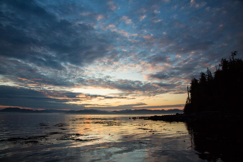 0545 Uhr - Sonnenaufgang über Princess Royal Island