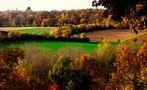 Die Farben des Herbstes von SINA
