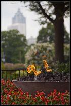 06874 - The Eternal Flame in Atlanta