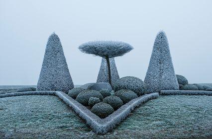 06 - Buchsbaum-Skulpturen