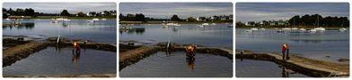 Les couleurs du Golfe - 21 (Morbihan) Ostréiculteur von jonquille80