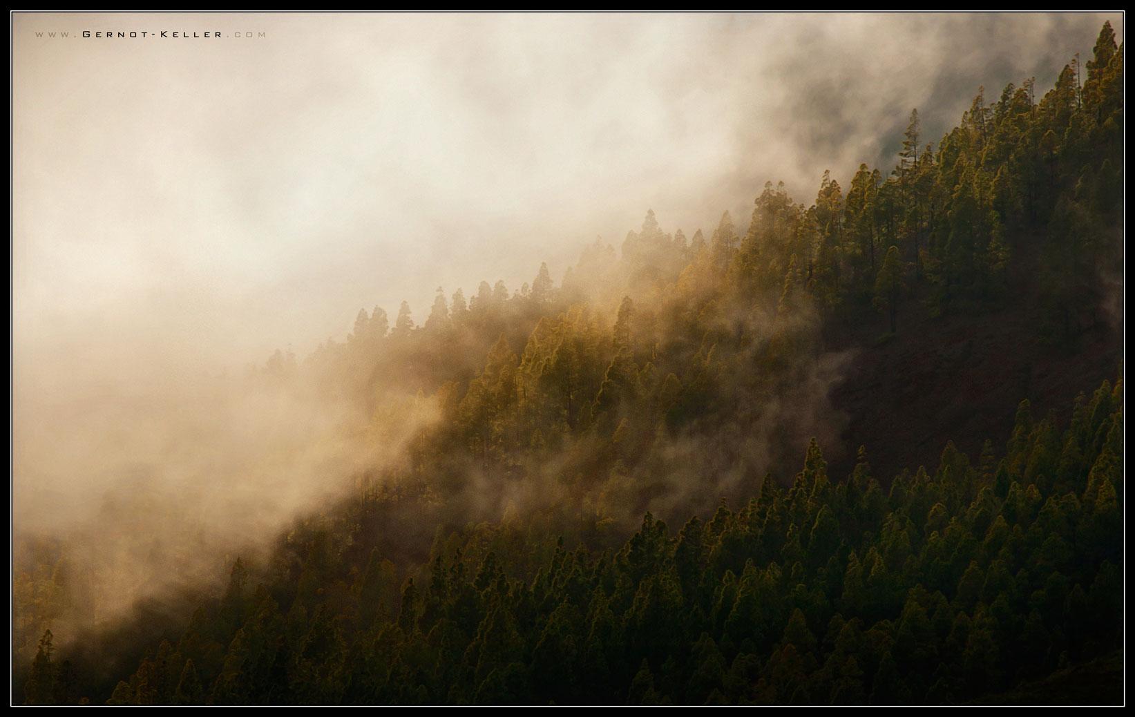 09627 - Teneriffa - Die Wolken haengen tief heute