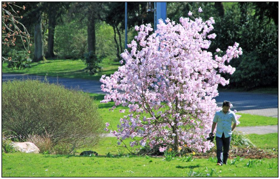 1 Frühling im DFG - Anziehungspunkt
