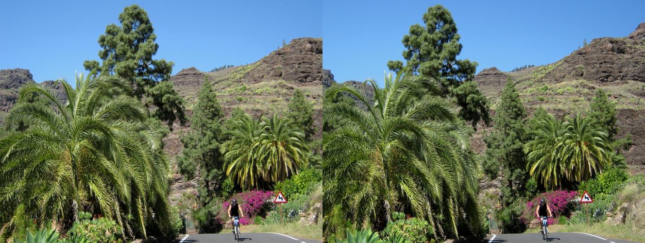 1. _ Gran Canaria _ X View _