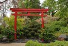 1 - Japanischer Garten