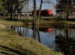 1 Tag - am Teich