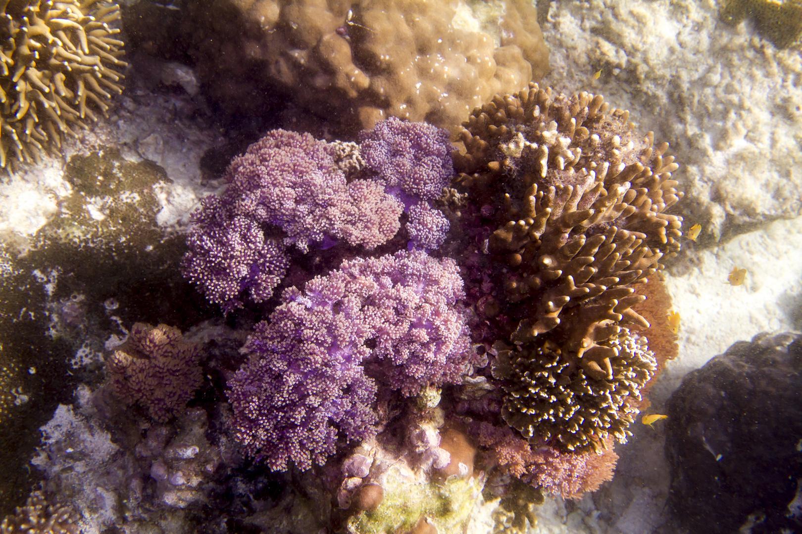 1. Versuch unter Wasser