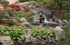 10 - Japanischer Garten