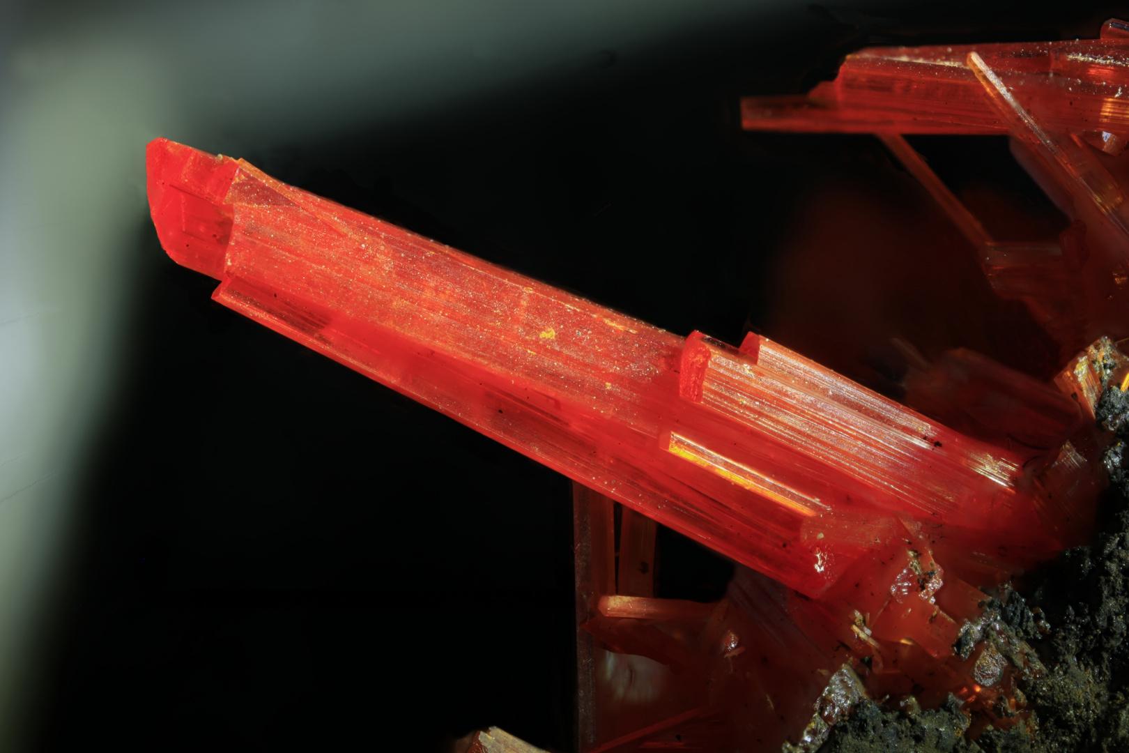 10 mm großer Krokoit-Kristall von Dundes Tasmanien