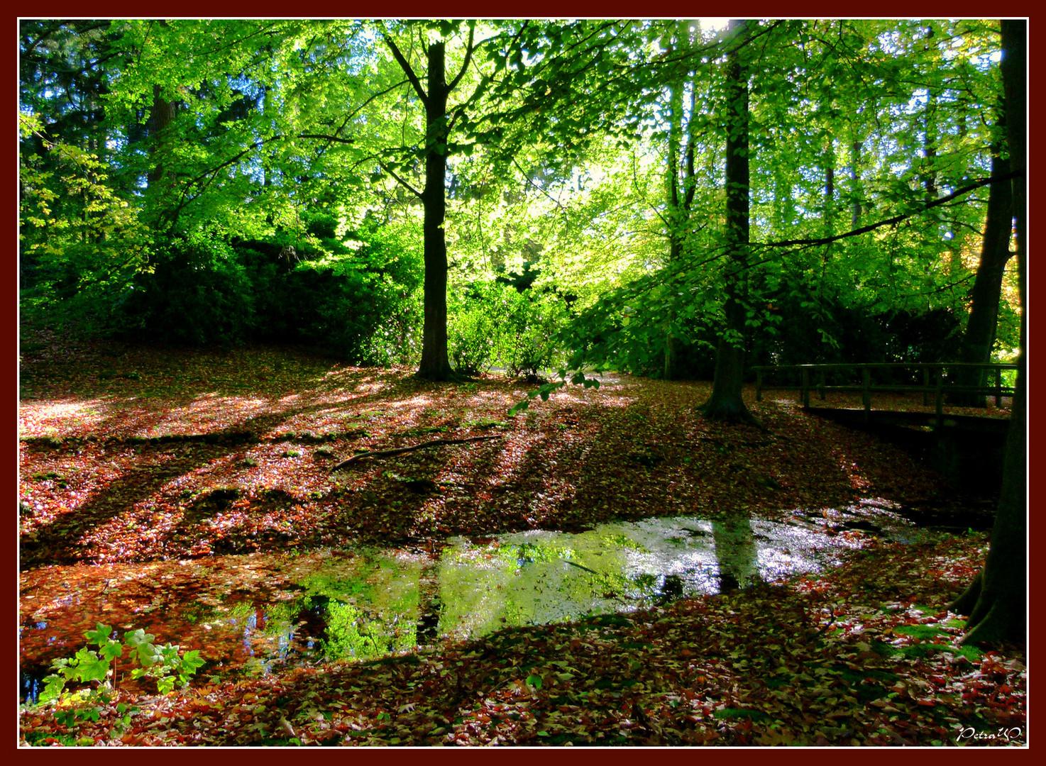 10 Ohlsdorfer Friedhof, Hamburg - Natur