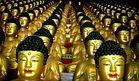 1000 Buddhas, Seoul, South Korea 2006