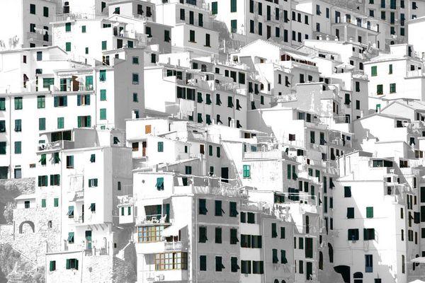 1000 windows