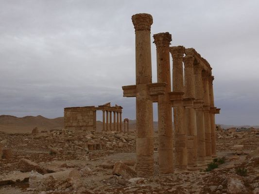 10719 Palmyra 3