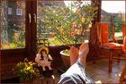 108-13 Tea-time im Frühling