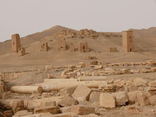10979 Palmyra 2
