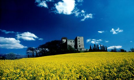 Fotoraduno Palermo