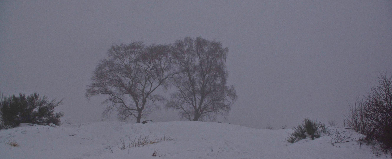 1.1.11 ... neblig und kalt