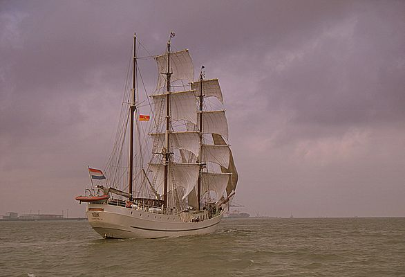 11.Jade-Weserport Cup 2012 in Wilhelmshaven...