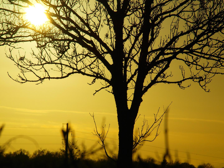 12 janvier 2010 16:45
