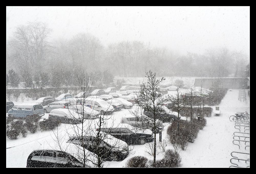 12. März 2013, 10:39 h, 60488 Frankfurt