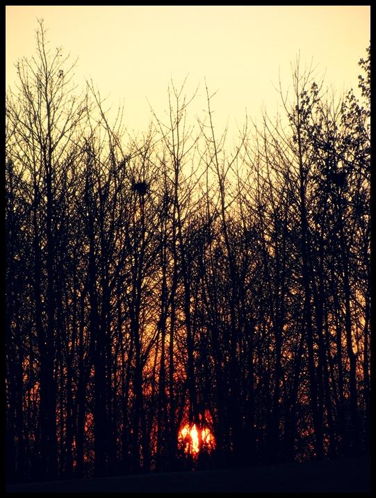 14. Weltenbrand