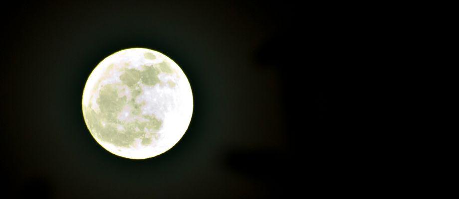 14.02.2012 in Piestany (SK) aufgenommen