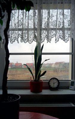 14:30 Uhr Regen und Langeweile