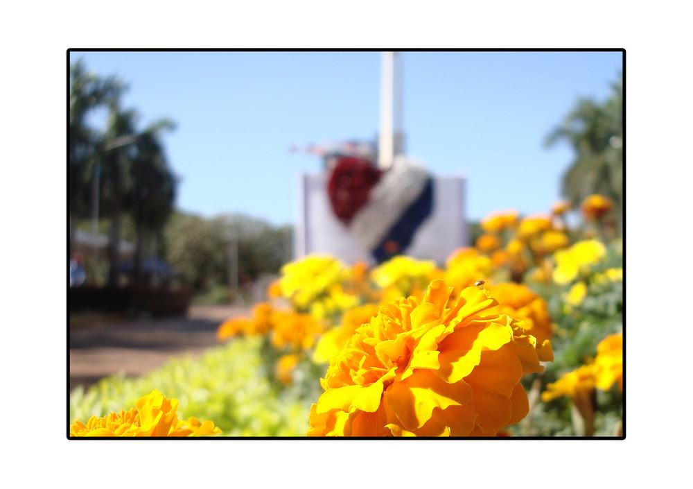 15 de mayo (dia de la independencia paraguaya)