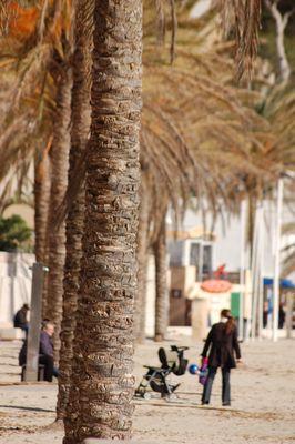 15 VIII XA, Promenade am Strand von Paguera