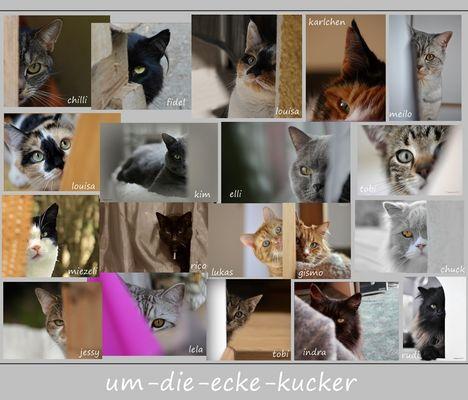 """19 x  __""""ums-eck-gekuckt""""__;-)"""