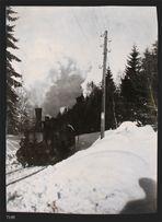 1923 im Bayerischen Wald