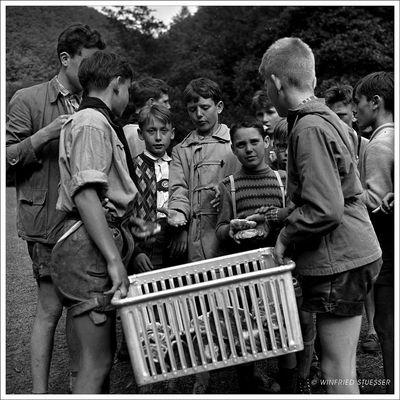 1957 Jugendzeltlager im Baybachtal-Hunsrück (51)