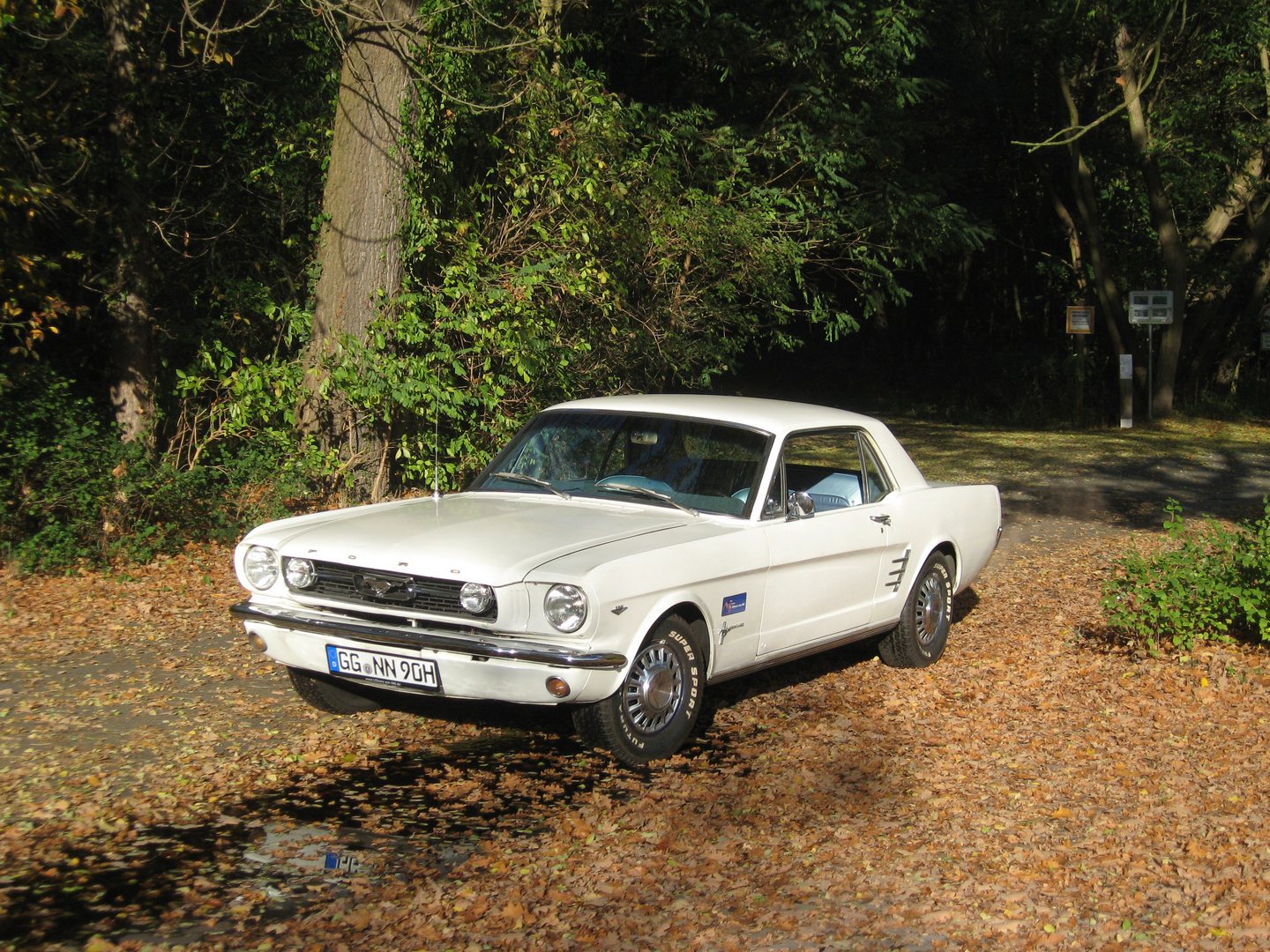 1966 FORD MUSTANG COUPE WHITE in D bei UScarsvonNN
