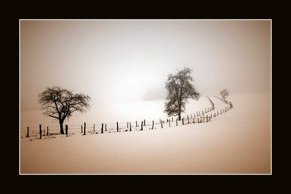 22.2.-28.2.2010 - Stille