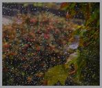 1.November 2006 - 3 Grad; schwerer Sturm und Regen.