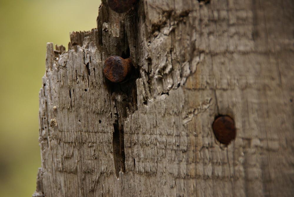 2 clous dans un bout de bois