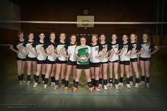 2. Damen SC Hennen Volleyball