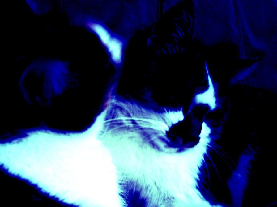 2 Farben - Blau