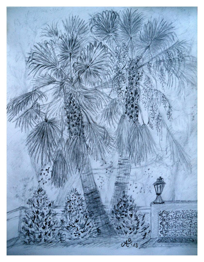 2 Palmen vor dem Hotel