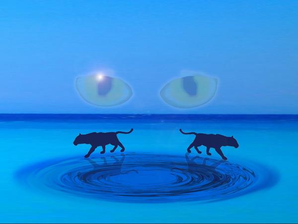 2 Panther