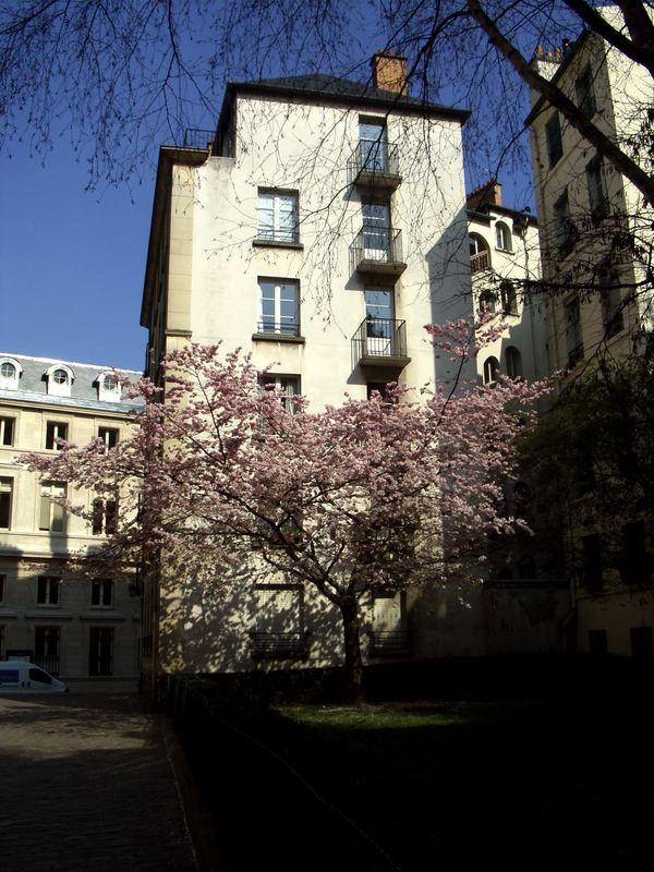 20-24 Rue des Barres