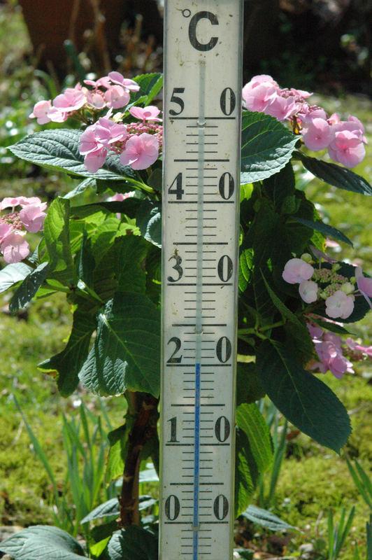 20 Grad Celsius 20. März 2005
