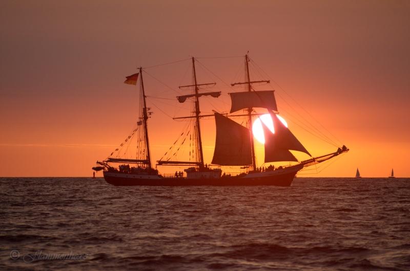 20. HanseSail - Sundown I
