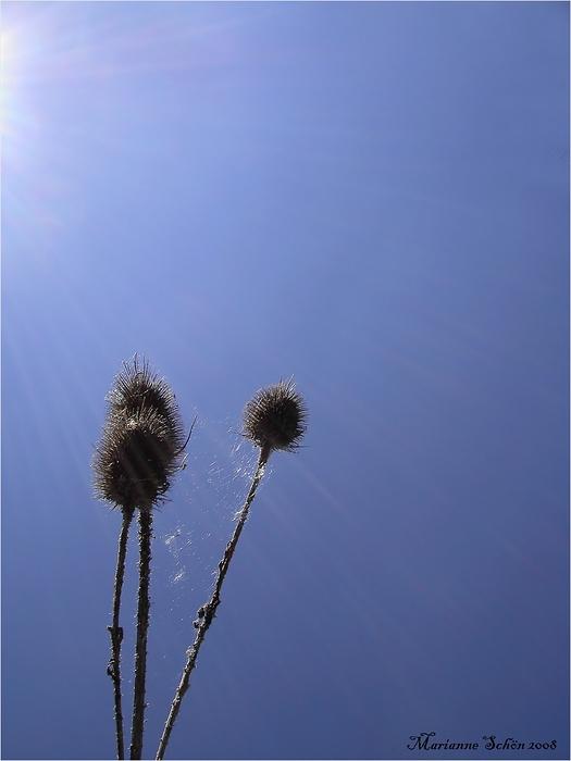 20° warm und Sonne pur