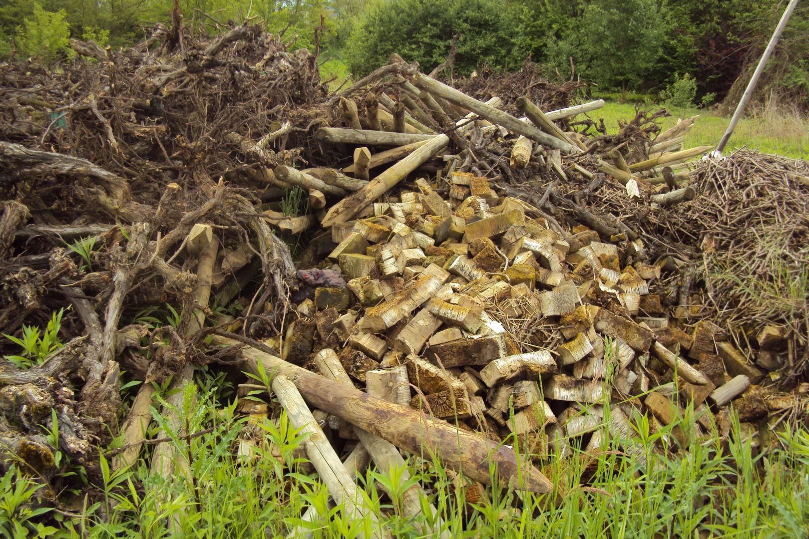 20000 warme Mahlzeiten (Holzabfälle im Ruschgraben)