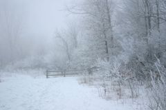 2005 Foggy Winter Morning